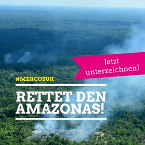 Bild des brennenden Amazonas, Rauchschwaden wehen über dem Urwald